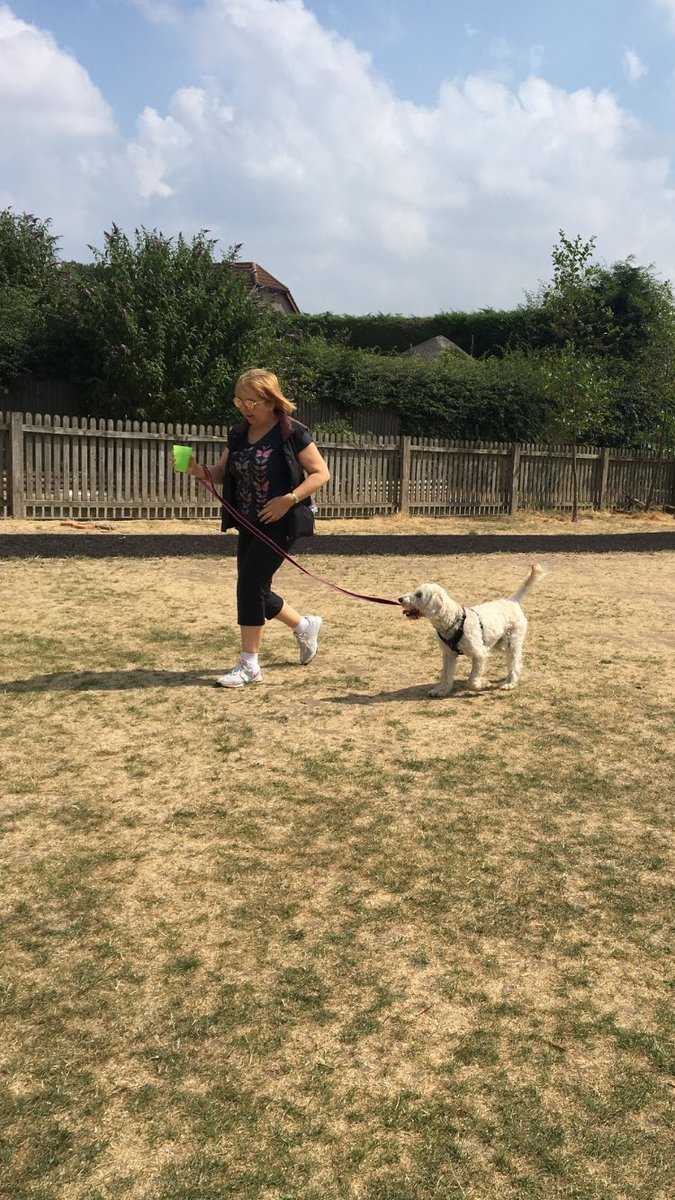test Twitter Media - Daisy & Miss Parkes had great fun at their 'Spawts day'. Our team won& we won fastest recall.@Myhappydoguk @willowsvets https://t.co/tBRHDgMaY1