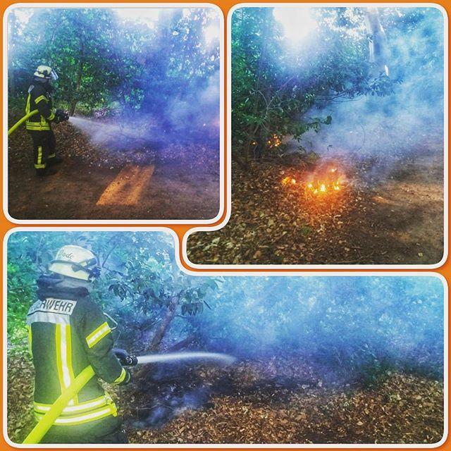 test Twitter Media - #feuerwehr #nordhorn #feuerwehrnordhorn #grafschaftbentheim #gottzurehrdemnächstenzurwehr #feuer #brand #brandeinsatz #einsatz #112 #notruf #wald #waldbrand #flächenbrand #bomberos #blaulicht #fire #firefighter #straz #pompiers #emergency #chive #vigilid… https://t.co/pPz6XT9zIg https://t.co/hU9vZnaN6p