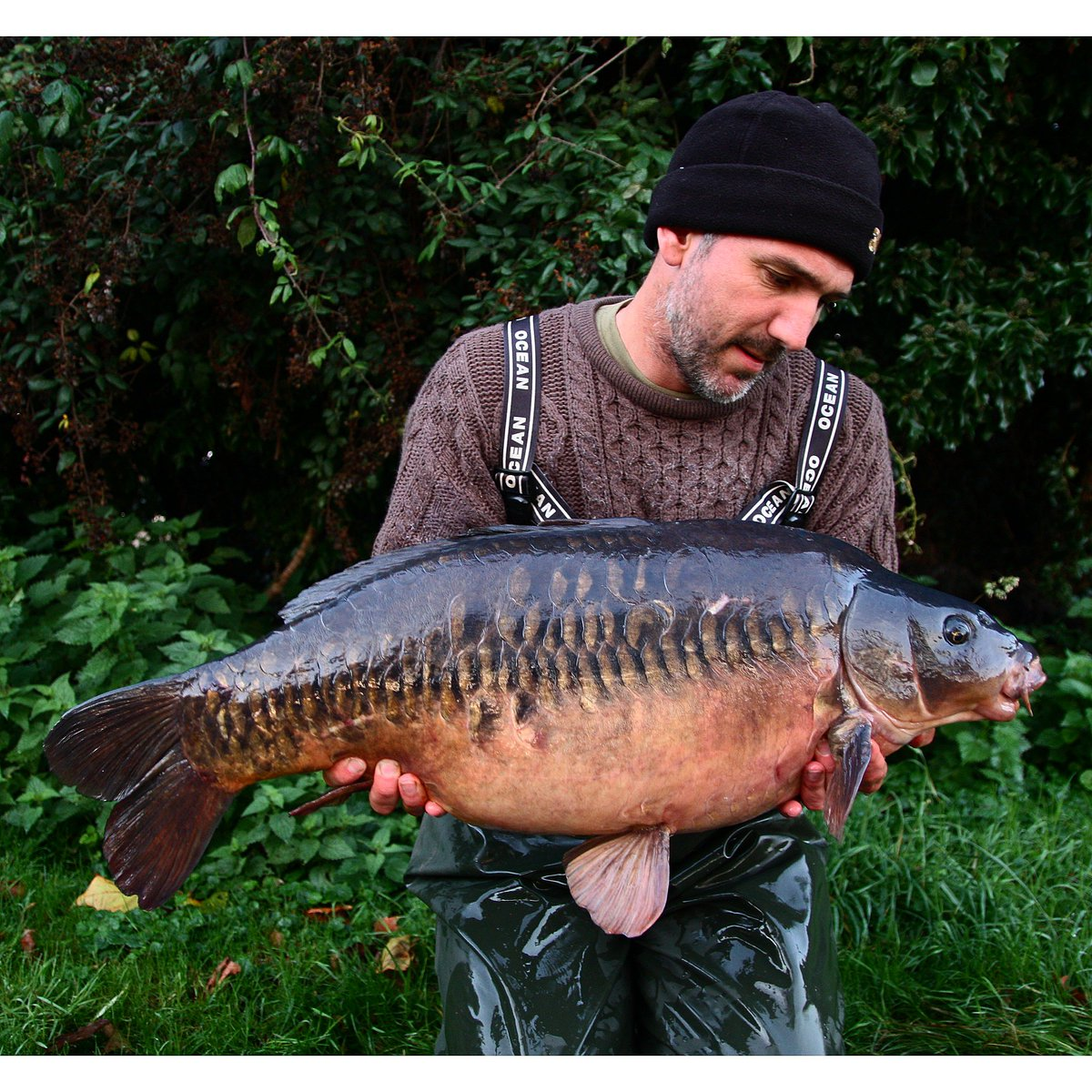 #rivercarp #carpfishing @CotswoldAqua  @GardnerTackle   Ouse scaly from a few moons ago.... https://