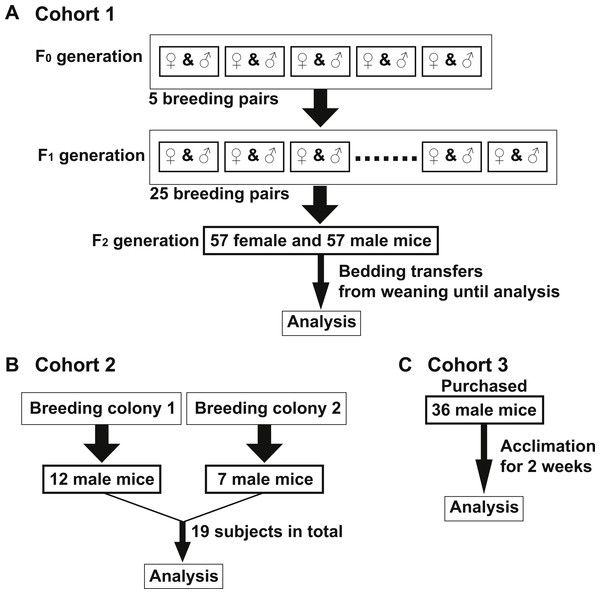 test Twitter Media - Minimizing confounders and increasing data quality in murine models for studies of the gut microbiome https://t.co/Oq8xhjwiIr https://t.co/AyaoLI18An
