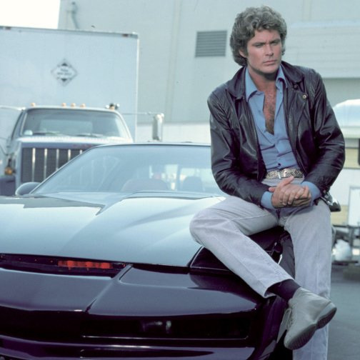 Happy 66th birthday, David Hasselhoff!