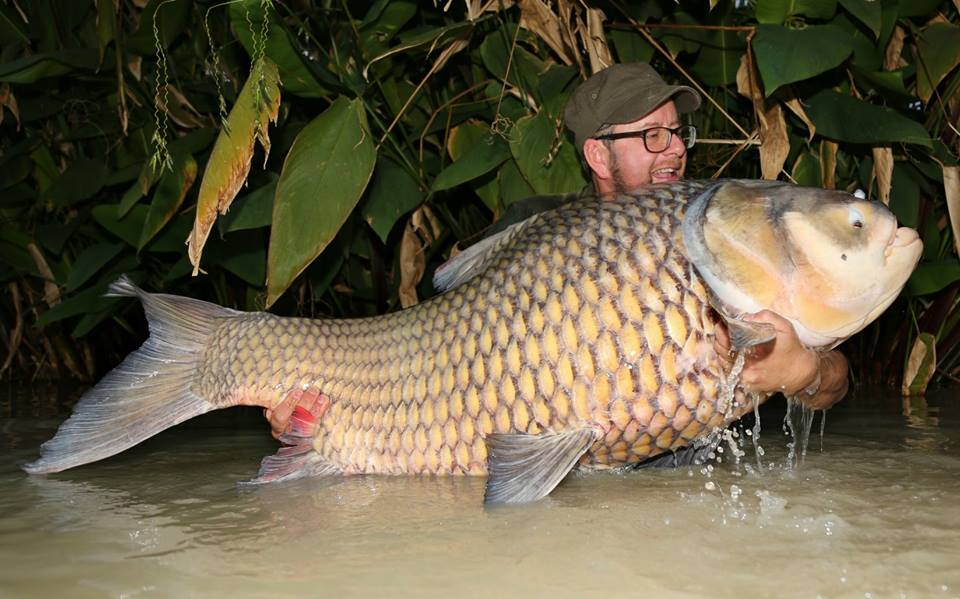 When we say the lake holds some big carp we <b>Really</b> mean BIG carp! #carp #carpfishing #fishing