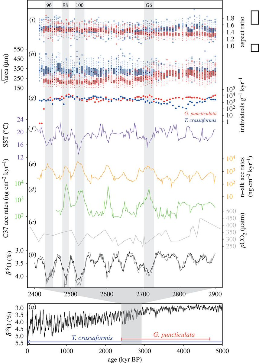 test Twitter Media - #ProcB Temperature is a poor proxy for synergistic #climate forcing of plankton evolution #openaccess https://t.co/x5Zg8QAxFh https://t.co/tgSksmxlCW