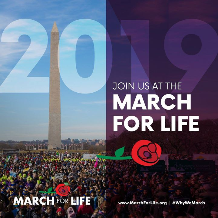 test Twitter Media - Today marks 6 months until the March for Life. See you in DC on January 18, 2019! Stay up to date with USCCB Pro-Life activities on Twitter at @usccbprolife.  #WhyWeMarch @March_for_Life https://t.co/iMzLKGJRJE
