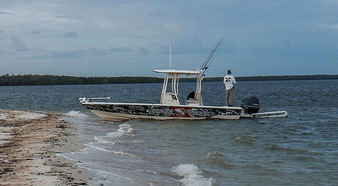 Watch: 500-pound grouper swallows reef shark in Florida