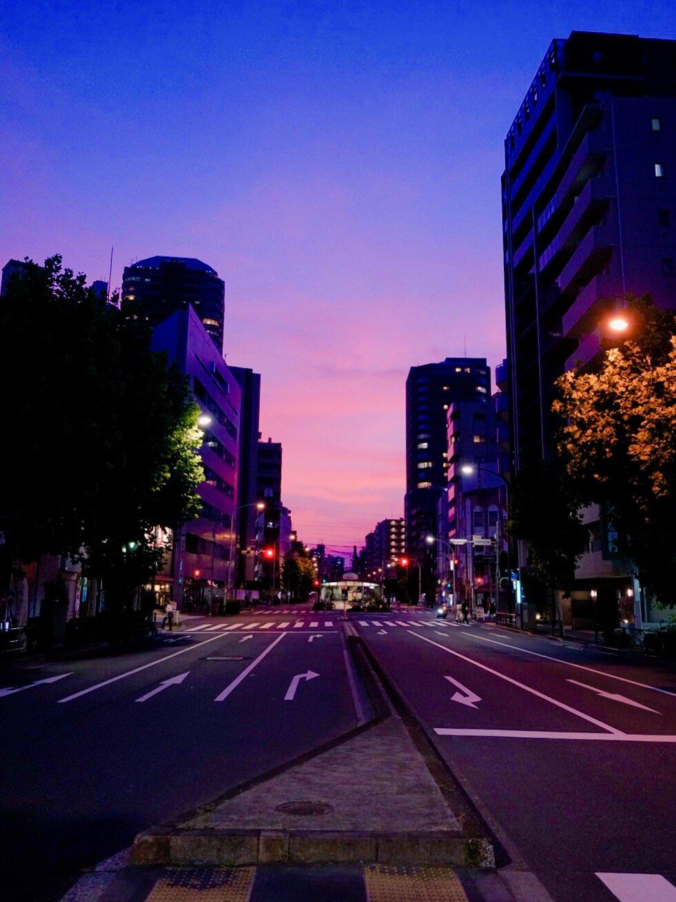 新宿、よく焼けてた。 https://t.co/llLEYzqiwv