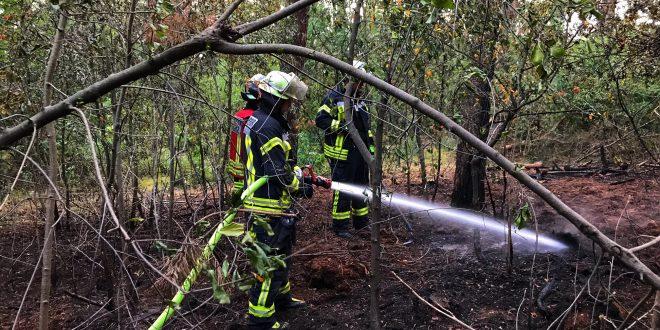 test Twitter Media - Kleinere Einsätze halten die Feuerwehr in Atem https://t.co/AG4FQm8Nf0 https://t.co/F58D23HlwE