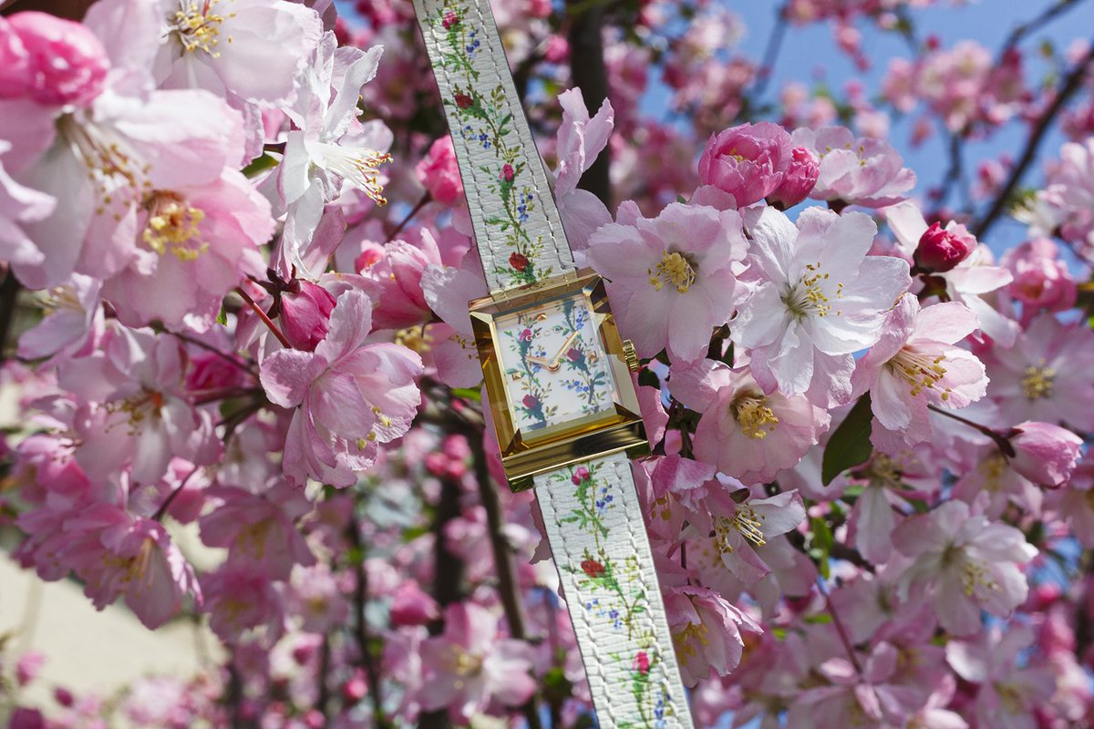 Every Spring The Cherry Blossoms Come To Tokyo For Just Two Weeks