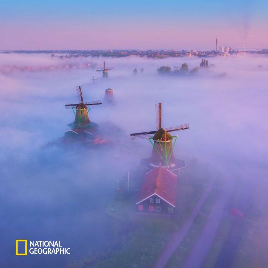 #NG오늘의포토 네덜란드 노르트폴란드주 잔담의 풍차들이 안개에 뒤덮였습니다. 네덜란드의 상징이기도 한 풍차는 바다보다 낮은 땅에서 물을 퍼내기 위해 만들어졌습니다. https://t.co/wTQuAlJNH6