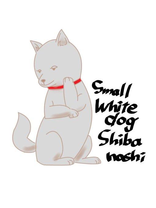 柴犬 白黒 イラスト
