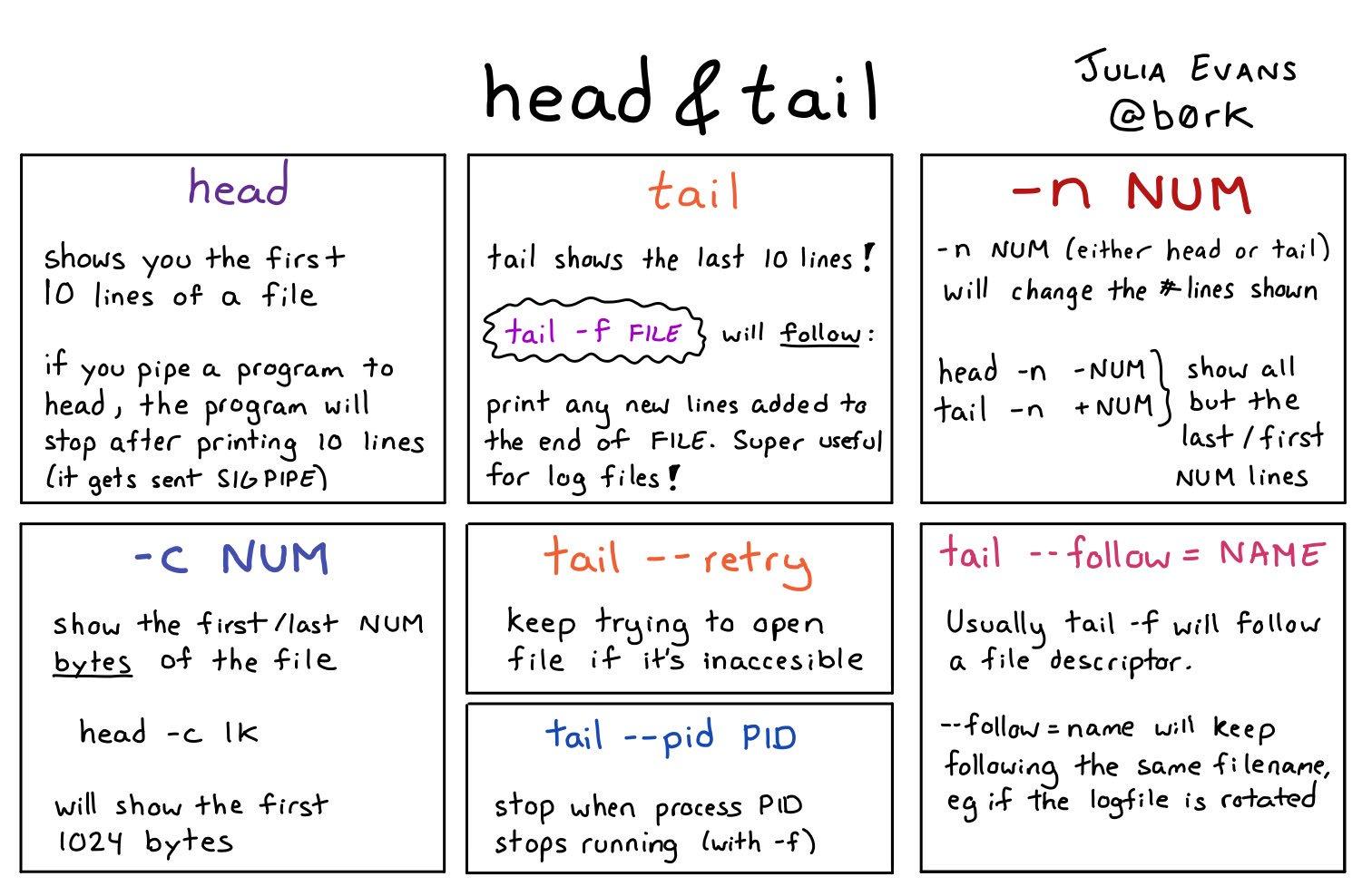 head & tail https://t.co/crPc0GtZP9