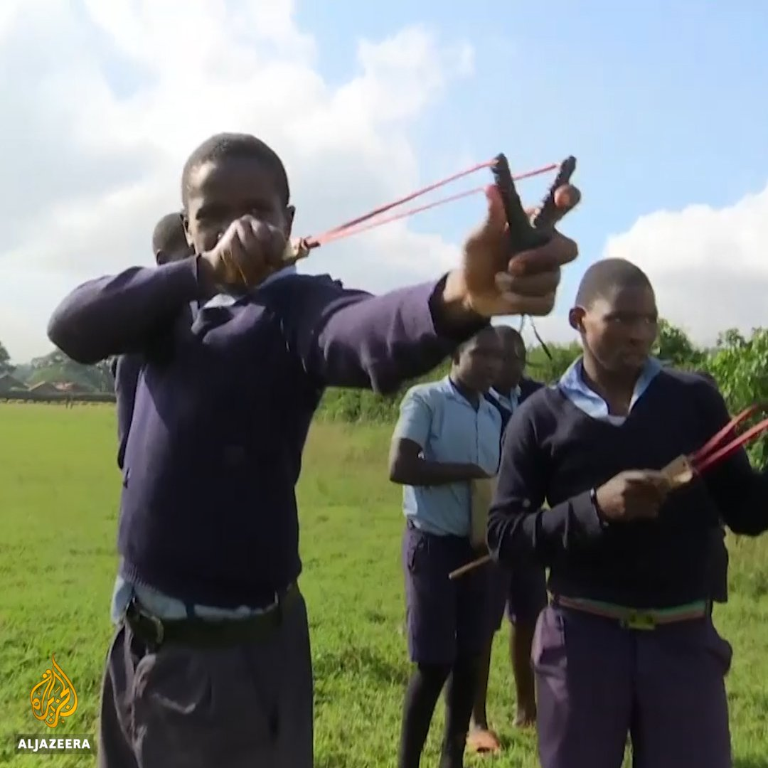 These kids in Kenya are using slingshots to disperse tree seeds in a bid to fight deforestation. https://t.co/bX9aWIeKUZ