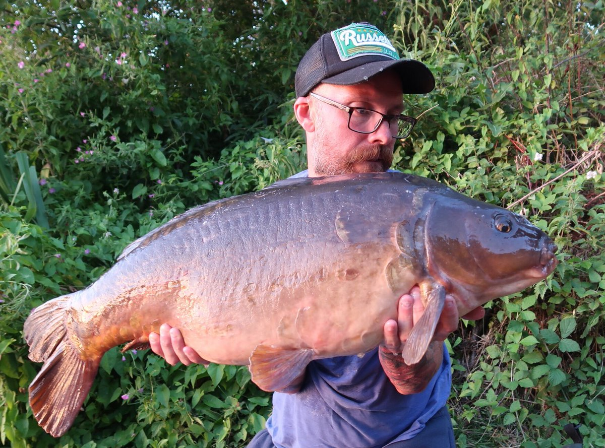 Quick overnighter on a tricky carp lake resulted in this upper 20. #carp #carpfishing #rustyrod #<b>