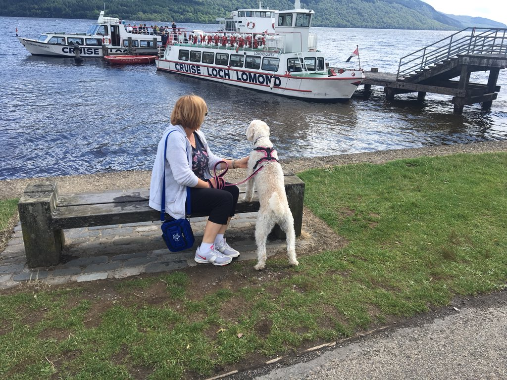 test Twitter Media - Daisy and Miss Parkes checking out Loch Lomand https://t.co/orJhEZBa6Q