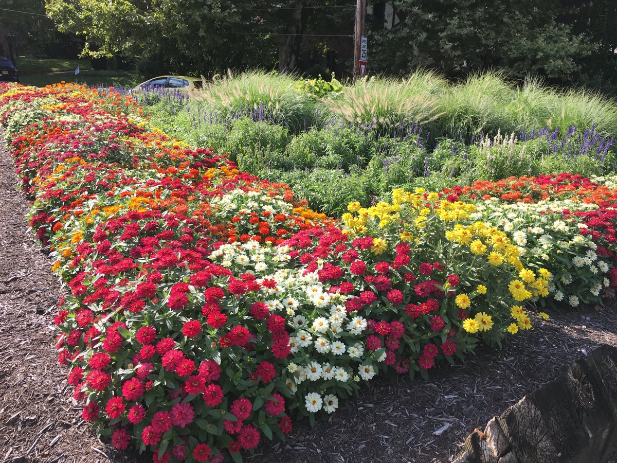 test Twitter Media - Walking by this large island of flowers made me smile.  Small moments of unexpected beauty are inspirational! #fantasyfan #fantasynovel #amwritingromance https://t.co/gC8lrCsUbZ