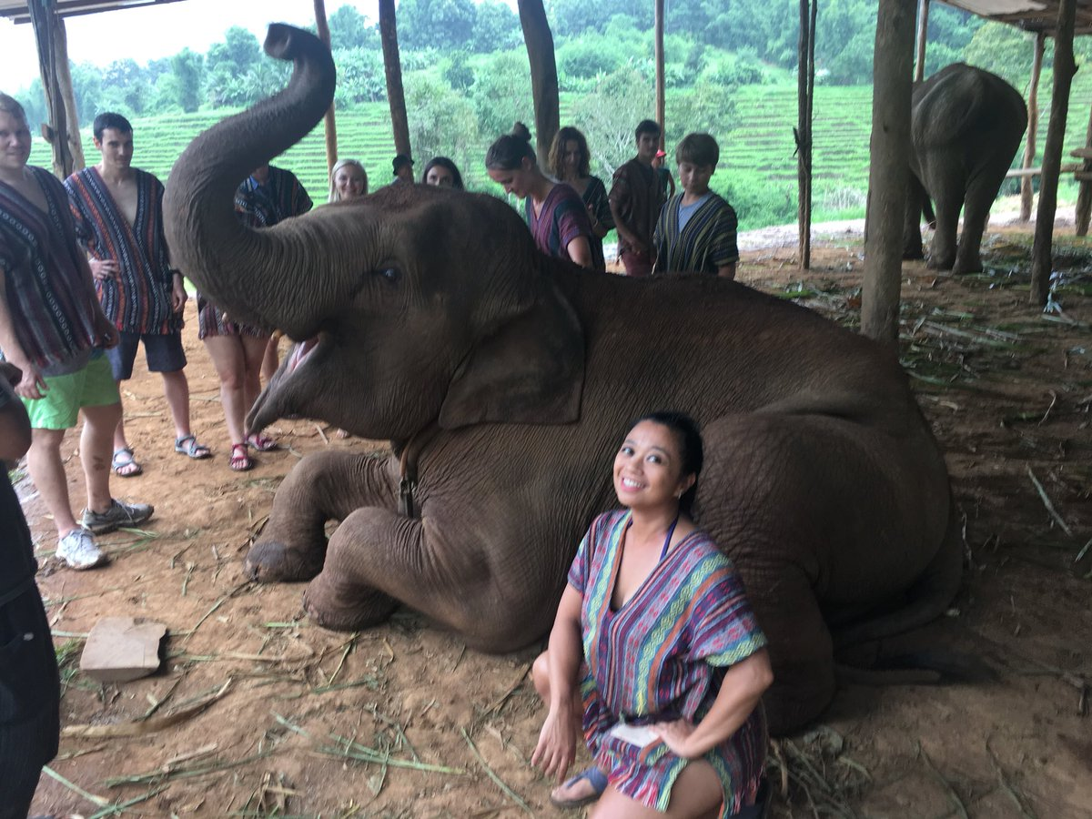 1 pic. Just a day of cleaning and feeding elephants! bbqyBMSTh7