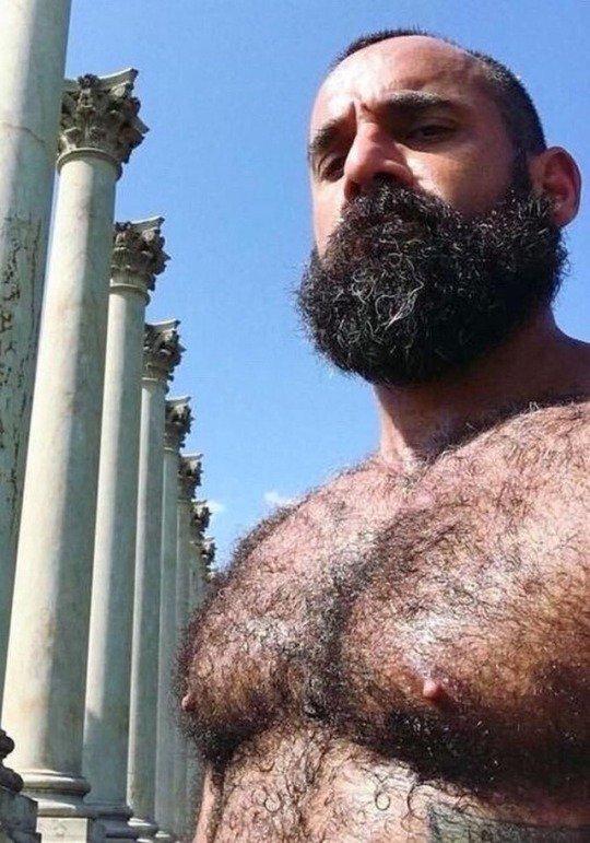 RT @ThatFurryBear: Follow ThatFurryBear to get daily #Hairymen, #Gaybear pictures! https://t.co/ZXCv0an6Hy