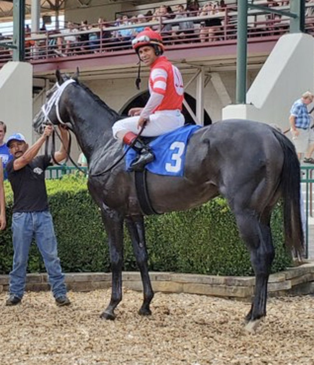 test Twitter Media - Steve Landers has had a big week! 3 winners all purchased at public auction and trained by @bradcoxracing. Leofric ($100k) gave him his first Graded Stake win in G3 WV Gov Cup Sat. Pole Setter ($220k) won MSW nicely on debut Sunday. Bold Prophet ($85k) won Allowance in hand today https://t.co/RmAAyBvHEv