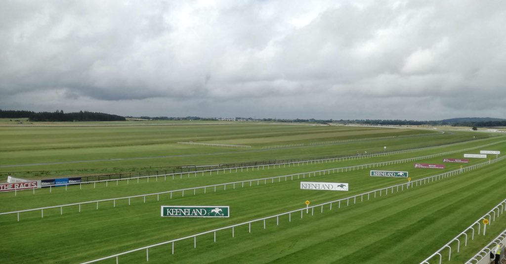 test Twitter Media - Beautiful Curragh of Kildare! #ComeRacing to the @curraghrace https://t.co/YlPuiKZhos
