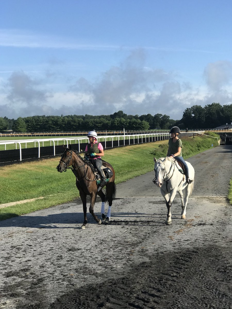 test Twitter Media - We talk about our wins, but occasionally things don't go right after purchase. Here is one of ours (good luck guessing) heading for a dynamic scope @fairhilletc. @katelyngeorgina escorting her to the track. Best to call timeout and do all you can to help the situation. https://t.co/Eu7L3Upmjb