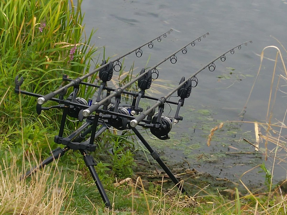Game on! Fox RX plus micron 😍 #carpfishing #ladyfisher https://t.co/qIC4YZJcyr