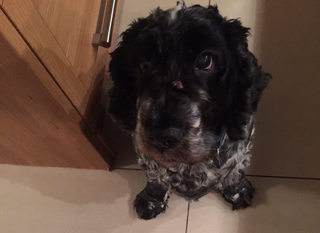 Any supper mum ? ❤️❤️❤️❤️❤️ https://t.co/Aw6Saj0IVK
