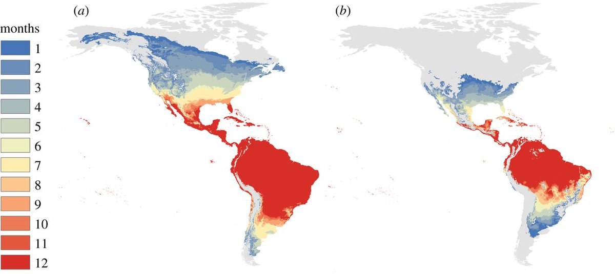 test Twitter Media - #ProcB Temperature drives #Zika virus transmission #openaccess https://t.co/1OVQEChtDD. Find out more from the authors in our blog https://t.co/Wnx1H6DMXA https://t.co/QcI6PwNl34