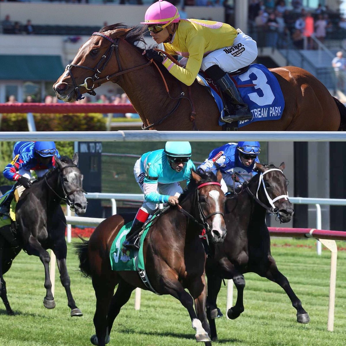 test Twitter Media - DO YOU HEAR THE PEOPLE SING 🎶 🇫🇷 grass tigresses bookend the top 3yo Filly grass races in 🇺🇸 on Saturday. G3W/G1P THEWAYIAM in the G2 Lake Placid. SW COLONIA in the G1 Del Mar Oaks. Both @MandoreAgency / BSW Purchases for Madaket, Dubb (both) and Elkstone. @GrahamMotion https://t.co/M2hjcN6nk4