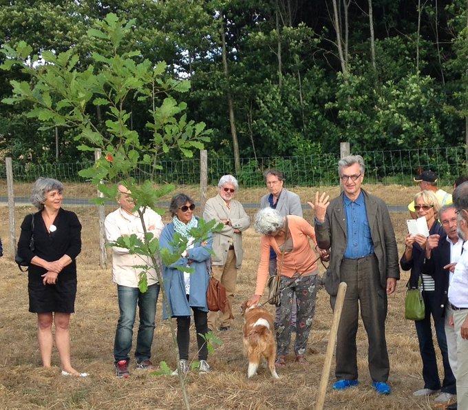 Arboretum, Saint-Yrieix-la-Perche, France, July 2015 Belated Happy Birthday Wim Wenders 14 August