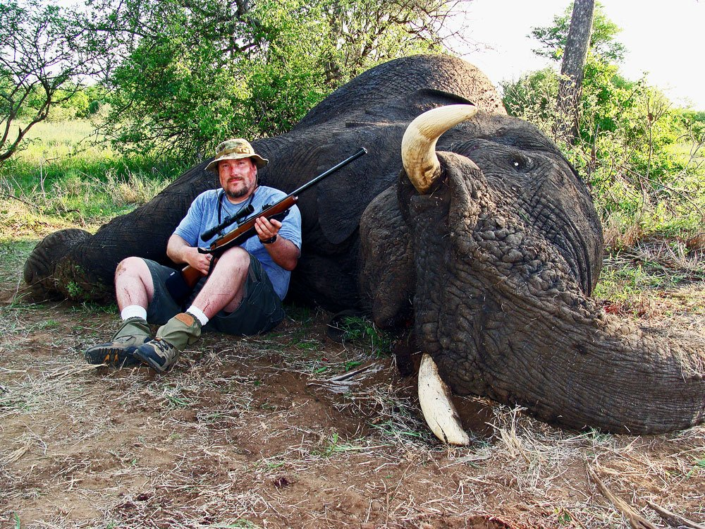 Please share if you demand a global ban on trophy hunting. https://t.co/Xo3brEofts