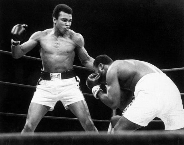 """""""It's just a job. Grass grows, birds fly, waves pound the sand. I beat people up."""" - Muhammad Ali https://t.co/ZpgneoYaF8"""