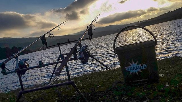 Happy days, productives nights! Buen fin de semana a tod@s! • • • #carpfishing #carpyshots #<b
