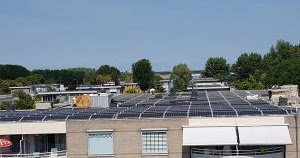 test Twitter Media - 480 zonnepanelen op Buitendijk in Zeewolde https://t.co/pQdPl5sPX4 https://t.co/FGL3ooX2MC