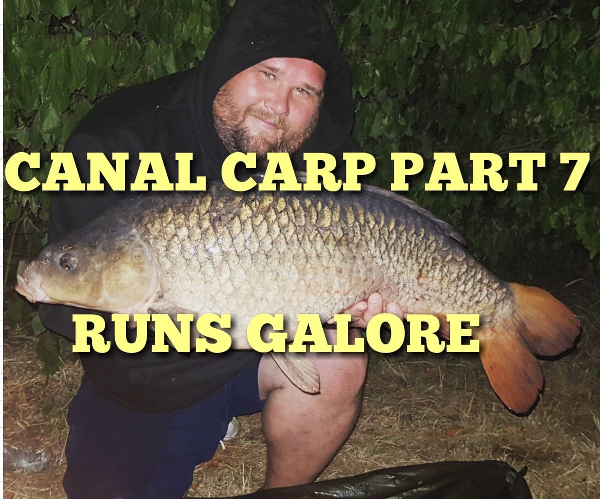THE HUNT FOR WILD ELUSIVE CANAL CARP WATCH HERE >>> https://t.co/E6iLl0KgBX  #carpfishing #