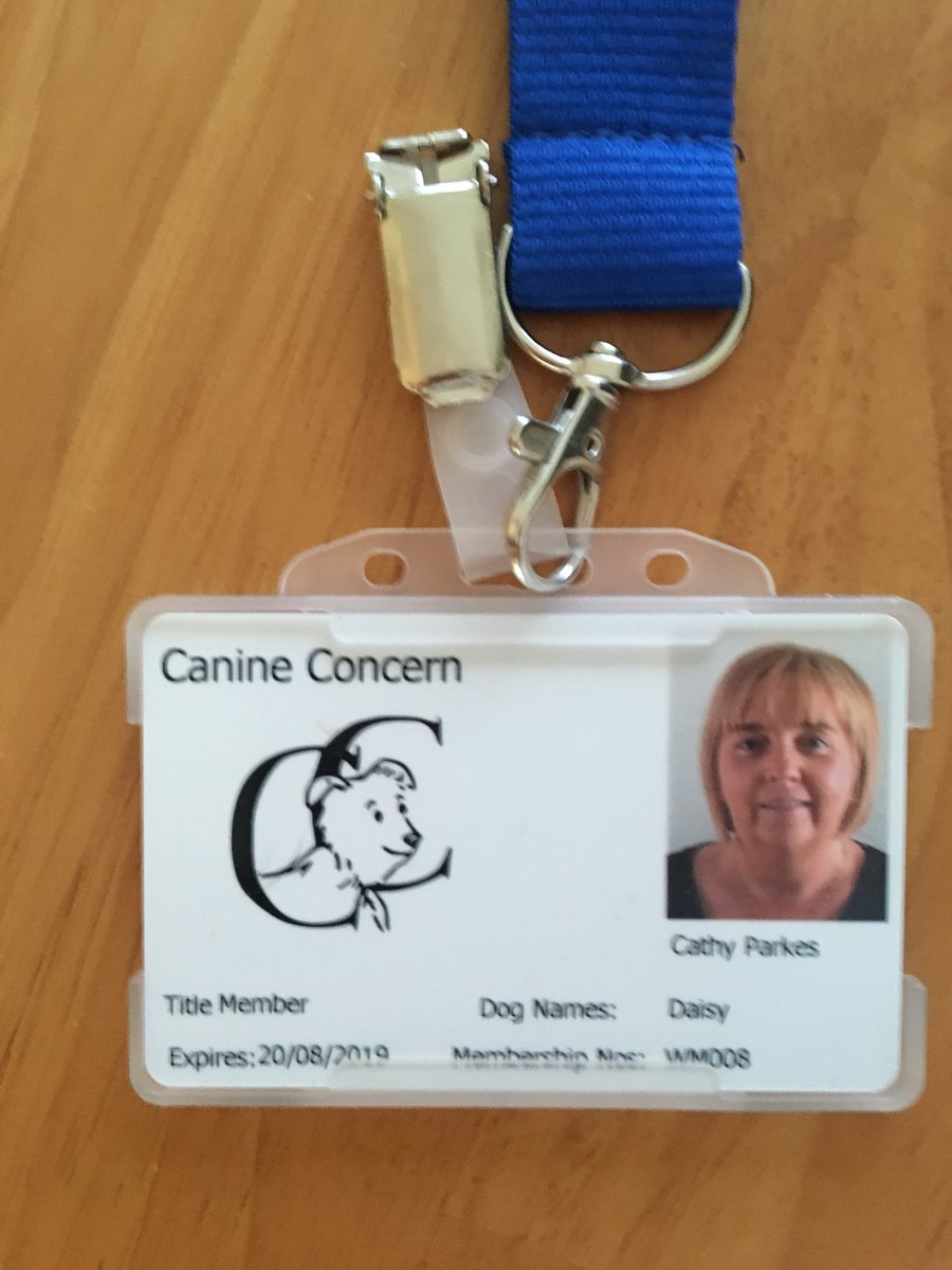 test Twitter Media - It's official. Daisy is now a certified Canine Concern Care Dog. Clever girl https://t.co/FBQIDw17Ym