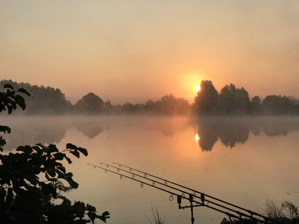 Good morning September... #carp #carpfishing #bluebelllakes #Northamptonshire https://t.co/K4imD9s8m