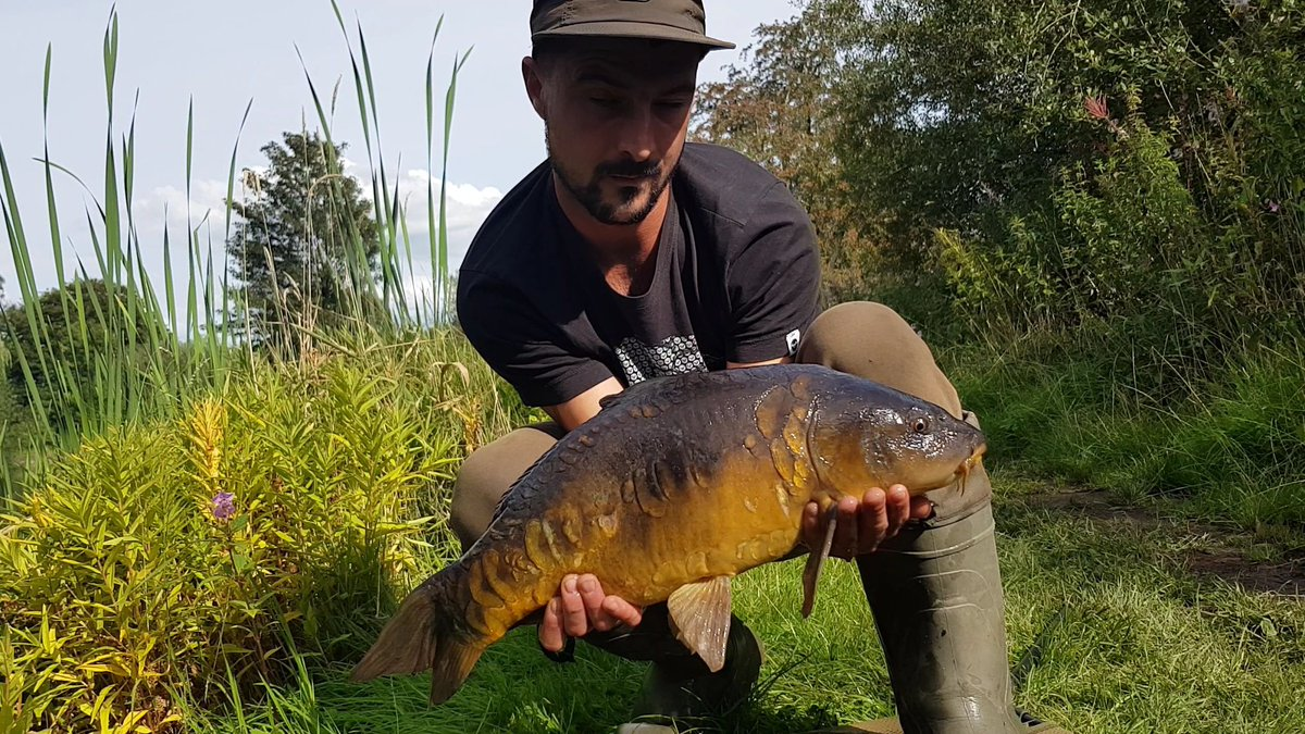 Had this scaley one the other day on the essential cell @TeamMainline #carpfishing https://t.co/egWw