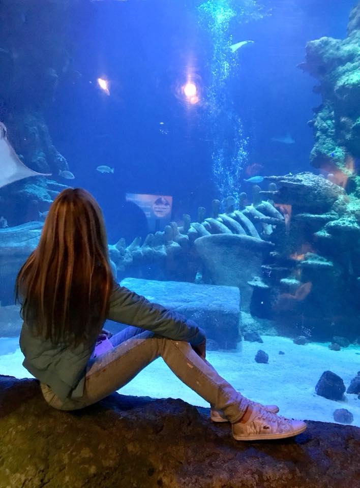 4 pic. aquarium uk🇬🇧😇😍 CKHl0hEUPk