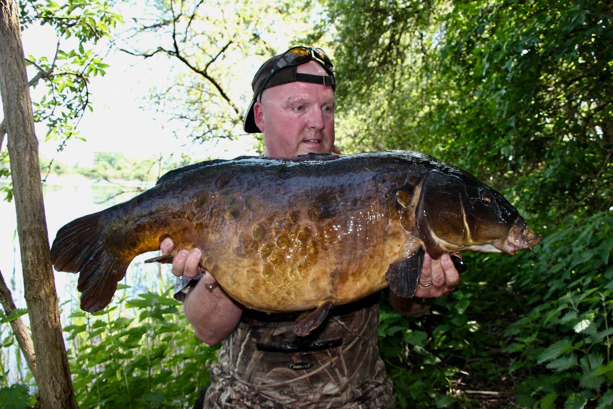 A special off the radar Scaly <b>Caught</b> in May #urbanbait #carpingafter #carpfishing  https://t.