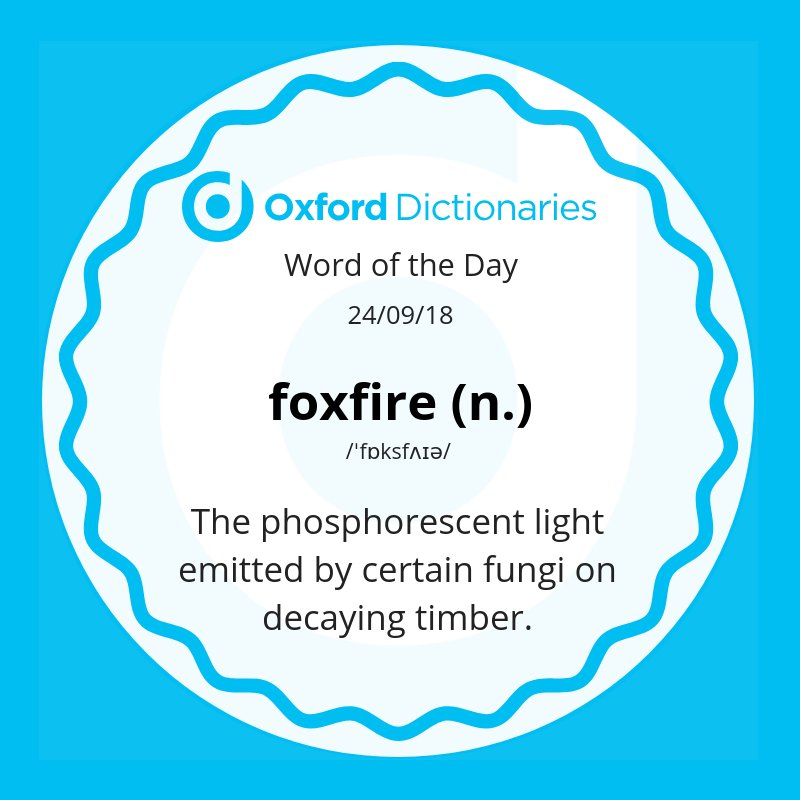 test Twitter Media - Word of the Day: foxfire - the phosphorescent light emitted by certain fungi on decaying timber.  https://t.co/G6wB1g9HKF https://t.co/EdsD4u71MN