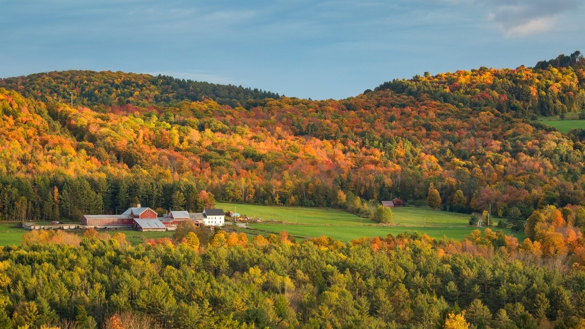 test Twitter Media - The most beautiful spots in the world to see fall foliage https://t.co/AxMOn5v4JT https://t.co/GkrLi59ihM