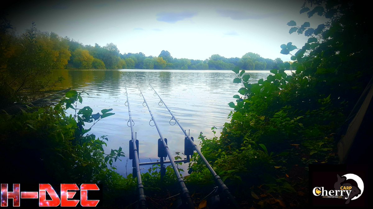https://t.co/7i9ET7m5hR @cherry_carp #hdec #carpfishing #bait #<b>Popup</b>s #pellet #cherrycarp htt