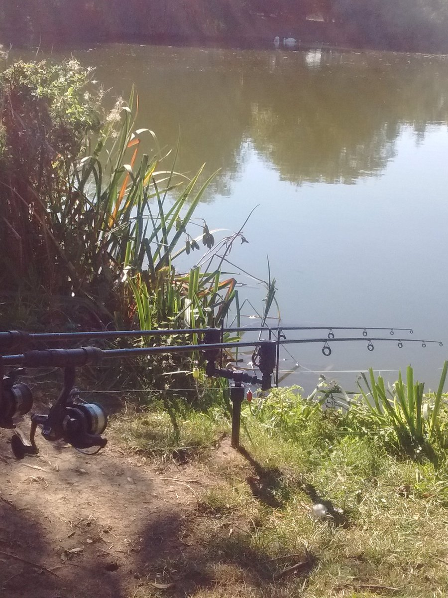 The sun is so warm I'm falling asleep! #fishingwidow #notafishingwidow #carp #carpfishing #fish #<b>
