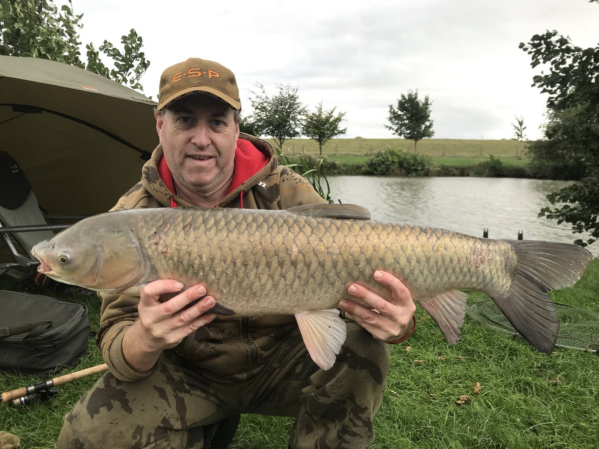 Pb Grass carp 17lb 8oz #carp #carpfishing https://t.co/SFohfZh8Jd