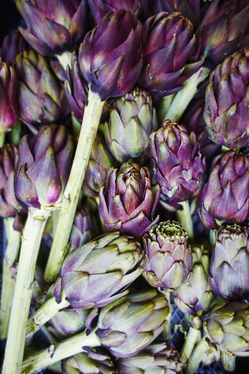 How to prep an #artichoke… #JamieCooksItaly  THREAD BELOW ⬇️ https://t.co/LT7x9cf2a1