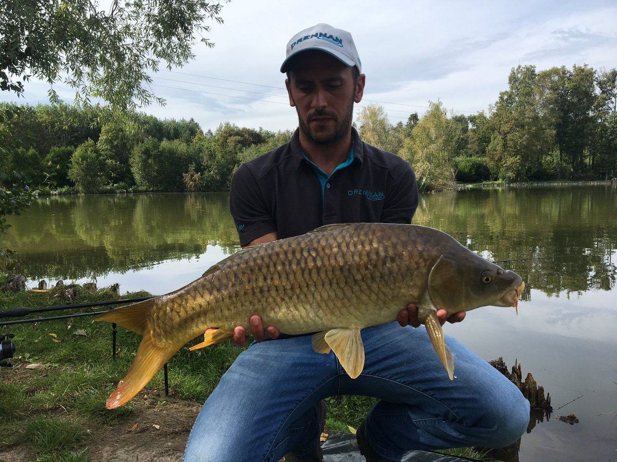 Les prises du week-end w/ @prestoninnov8 @Sonubaits @DrennanTackle #carpfishing https://t.co/Ey7G76b