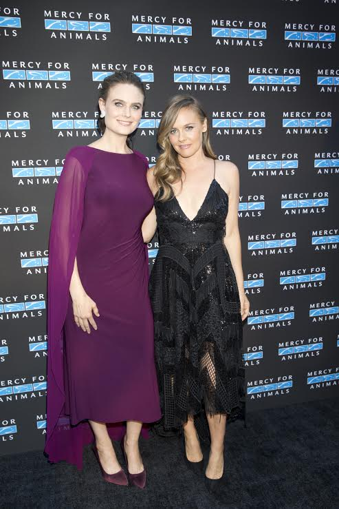 At the @MercyForAnimals #HiddenHeroesGala this past weekend. So honored to receive the