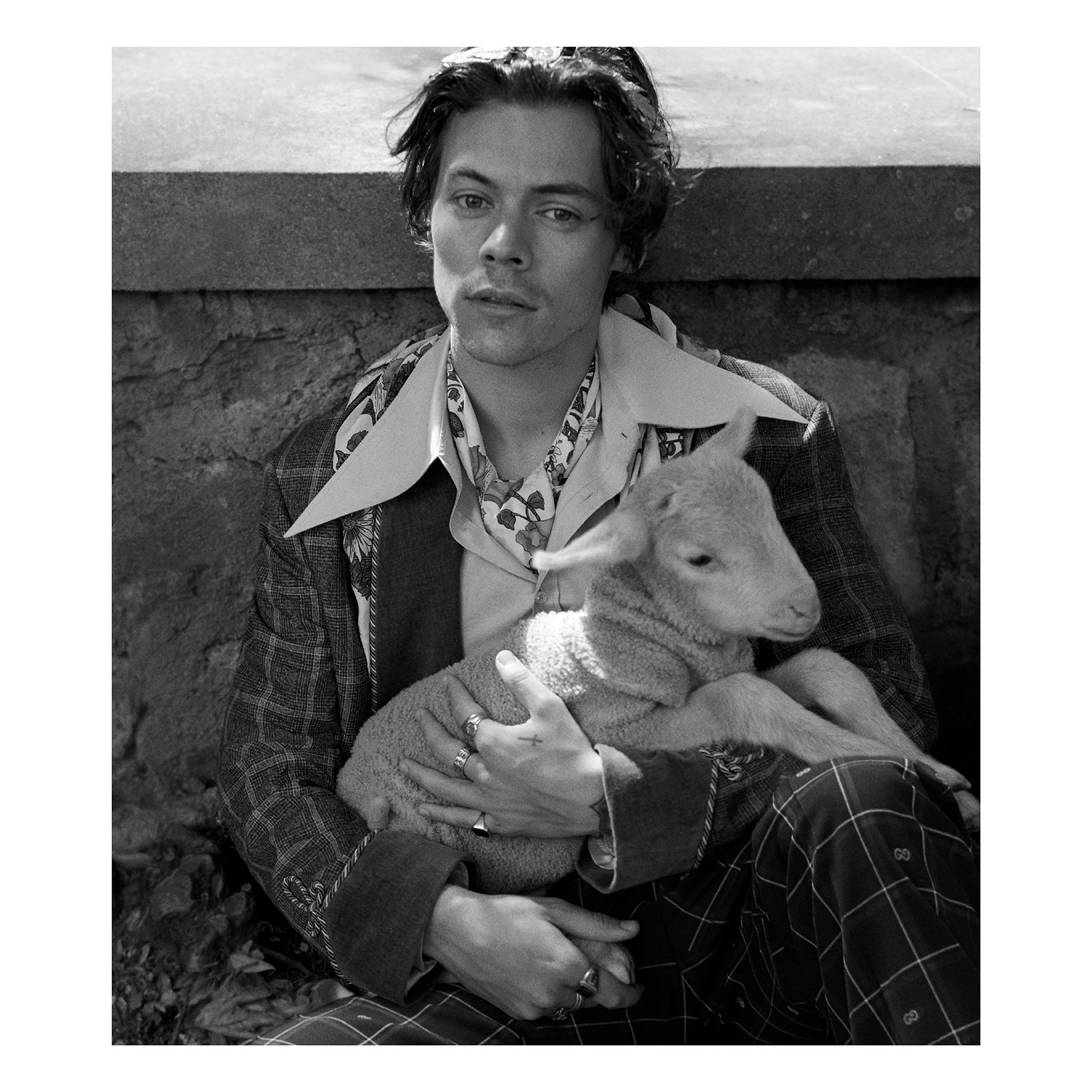 Pictured with a lamb, @Harry_Styles is photographed by #GlenLuchford for the #GucciTailoring campaign in a mouliné bee check jacket, an oxford tailored shirt and a silk scarf with floral print. He also wears a twill jacket, silk crêpe shirt and oversized cross necklace. https://t.co/YZ9a2EsvUf