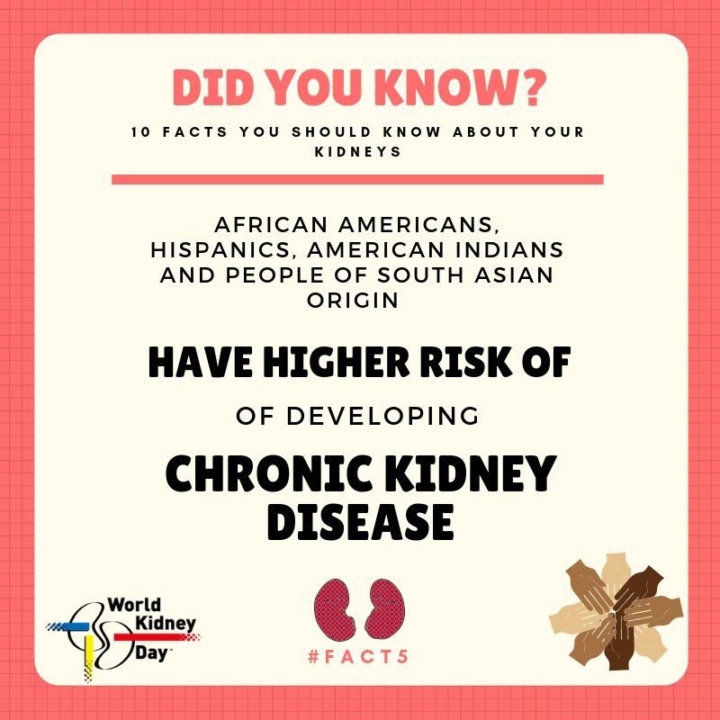 test Twitter Media - #KidneyDisease can affect people of all ages and races, although some communities might be more exposed to it, due in part to higher rates of #Diabetes and #HighBloodPressure.  #ChronicKidneyDisease #FridayFact #FridayFeeling #FridayMotivation #Hypertension #Health #NCDs #Kidney https://t.co/jm8ZrzVI7c
