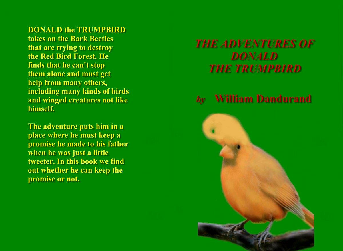 test Twitter Media - @DatingFine Donald the Trumpbird is a brave brave Trumpbird that fights to protect his forest and stands up and fights against all evil, this book will make a exciting animated movie! @donald_book @donald_book #Hollywood #America #Evil #Great https://t.co/0oublmQyfn